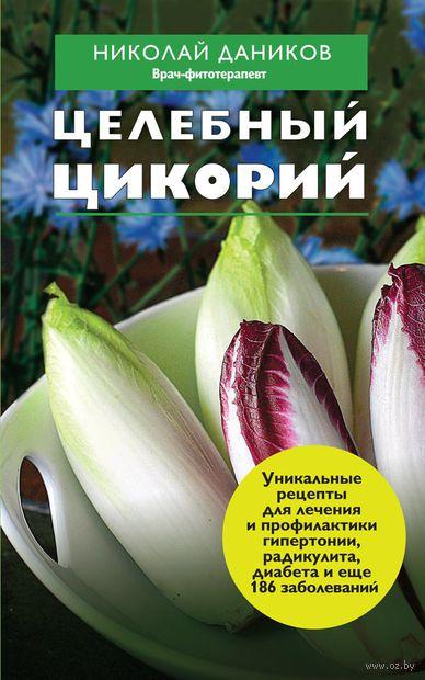 Целебный цикорий. Николай Даников