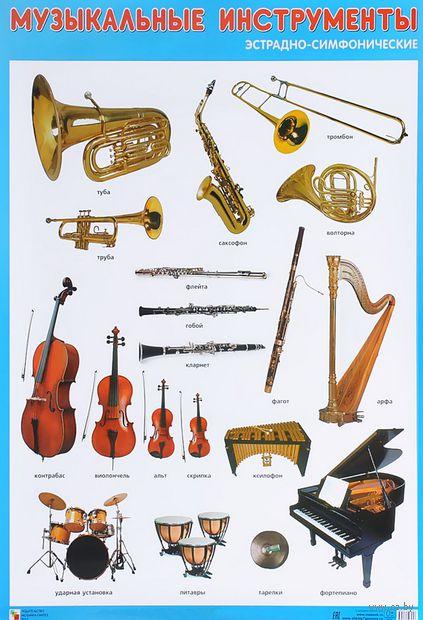 Эстрадно-симфонические музыкальные инструменты. Плакат