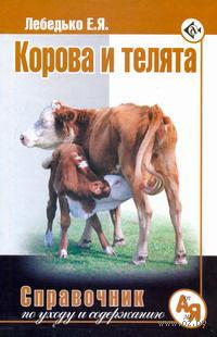 Корова и телята. Егор Лебедько