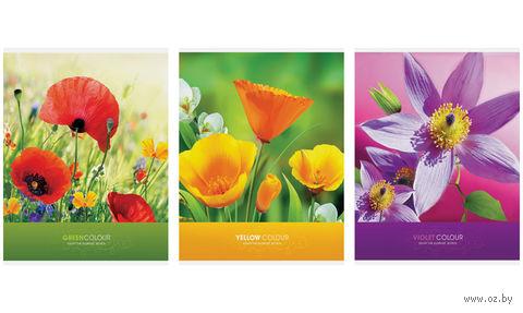 """Тетрадь А4 в клетку 96 листов """"Цветы. Яркие цветы"""""""
