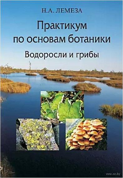 Практикум по основам ботаники. Водоросли и грибы — фото, картинка