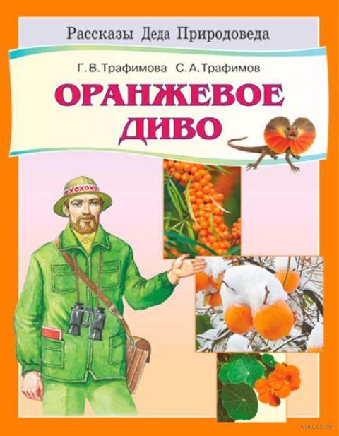 Оранжевое диво — фото, картинка