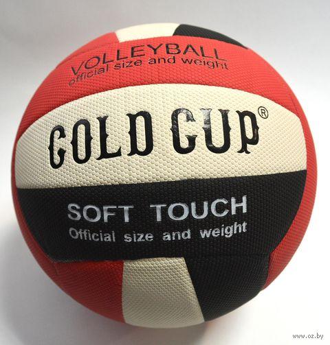 Мяч волейбольный №5 (арт. BWB-18) — фото, картинка