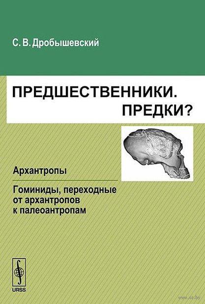 Предшественники. Предки? Часть 3: Архантропы. Часть 4: Гоминиды, переходные от архантропов к палеоантропам — фото, картинка