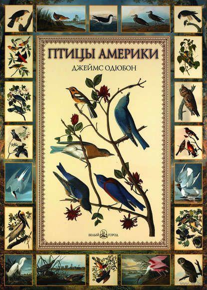 Птицы Америки. Евгений Коблик