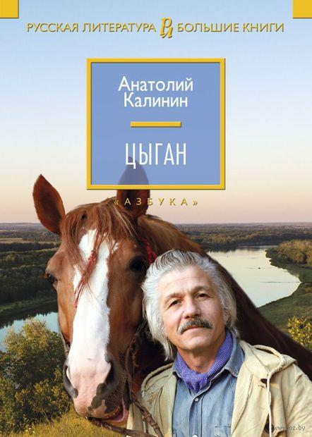 Цыган. Анатолий Калинин