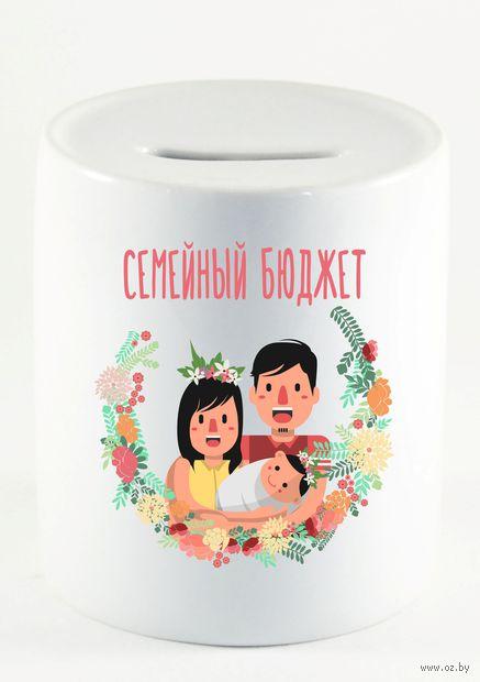 """Копилка """"Cемейный бюджет"""" (211)"""