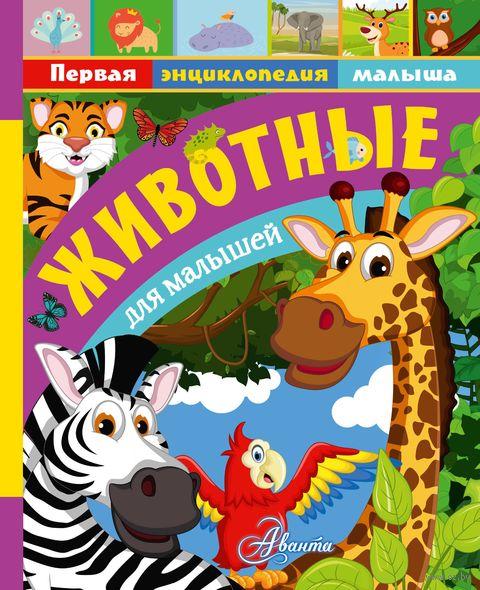 Животные для малышей — фото, картинка