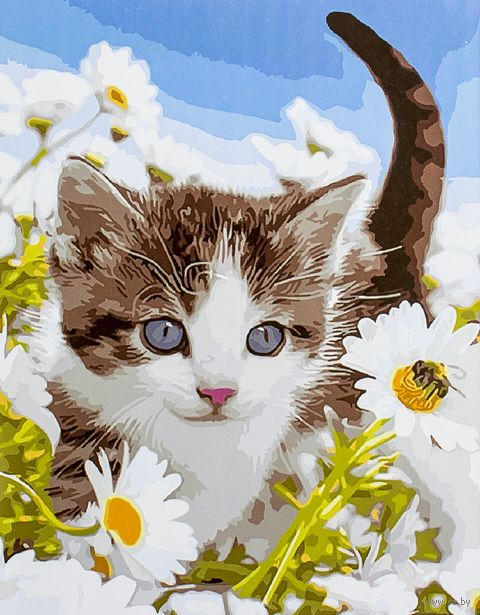 "Картина по номерам ""Котенок в ромашковом поле"" (400х500 мм) — фото, картинка"