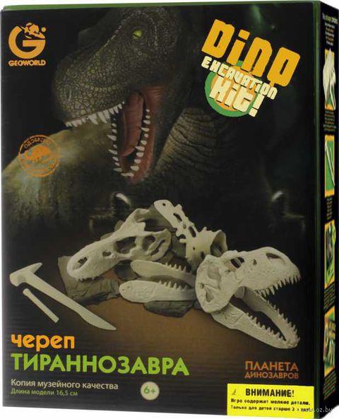 """Набор археолога """"Ископаемые в гипсе, Череп Тираннозавра"""""""