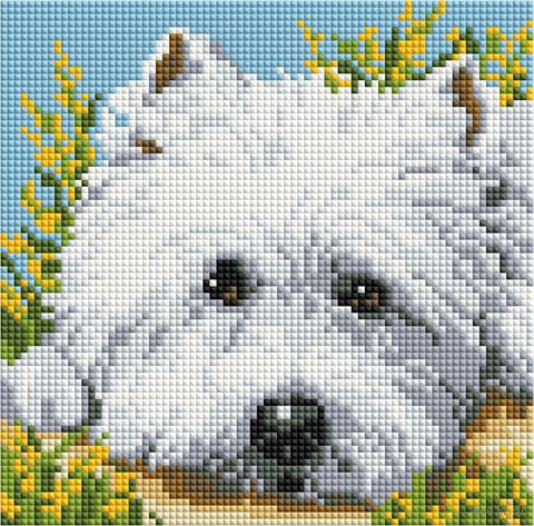 """Алмазная вышивка-мозаика """"Милый щенок"""" (200х200 мм) — фото, картинка"""