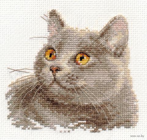 "Вышивка крестом ""Британский кот"" (120х110 мм) — фото, картинка"