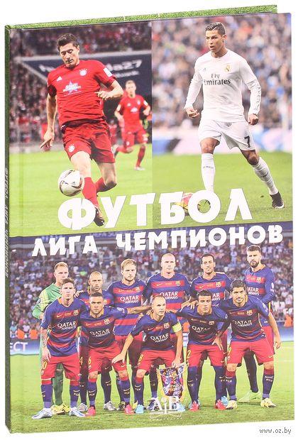 Футбол. Лига чемпионов — фото, картинка