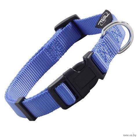 Ошейник (27-37 см; синий) — фото, картинка