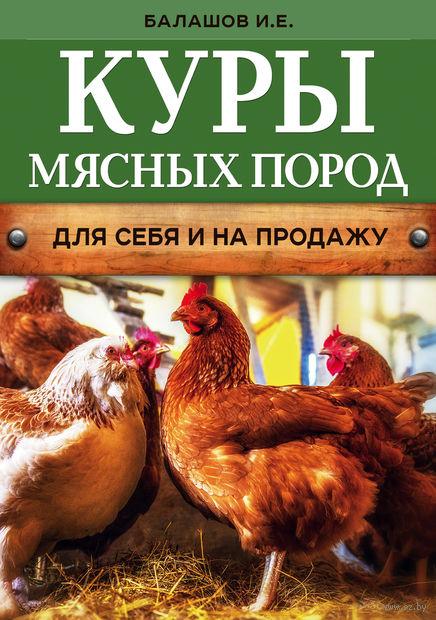Куры мясных пород. Иван Балашов