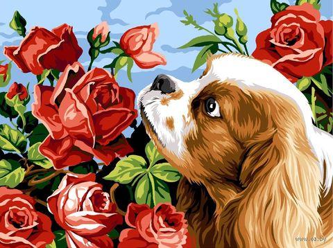"""Картина по номерам """"Аромат роз"""" (300х400 мм)"""