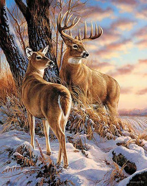 """Алмазная вышивка-мозаика """"В зимнем лесу"""" (380х480 мм) — фото, картинка"""