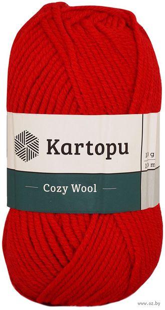 "Пряжа ""KARTOPU. Cozy Wool №K150"" (100 г; 110 м; красный) — фото, картинка"