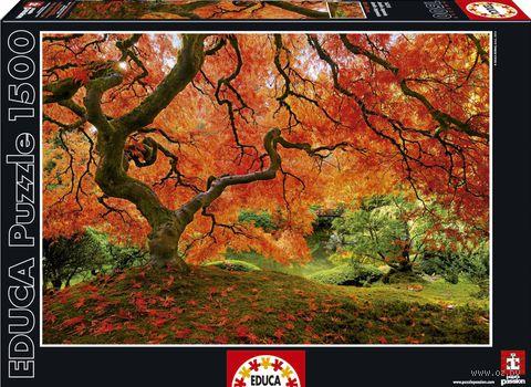 """Пазл """"Осень в японском саду"""" (1500 элементов) — фото, картинка"""