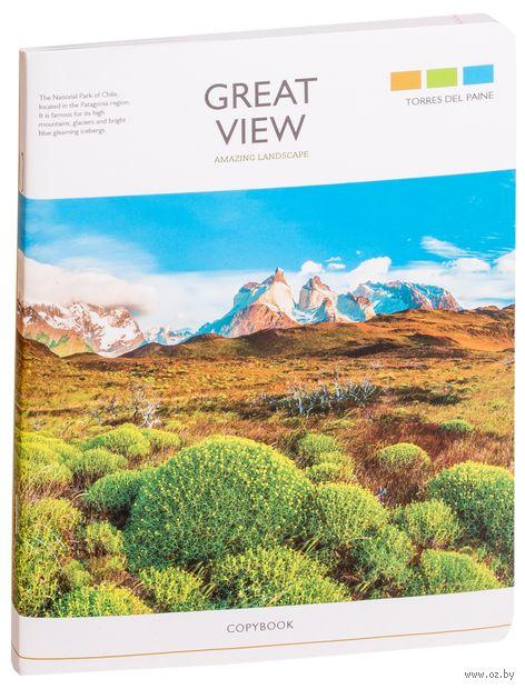 """Тетрадь общая в линейку """"Great View"""" (96 листов) — фото, картинка"""