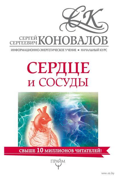 Сердце и сосуды. Информационно-энергетическое Учение. Начальный курс — фото, картинка