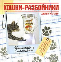 Кошки-разбойники — фото, картинка