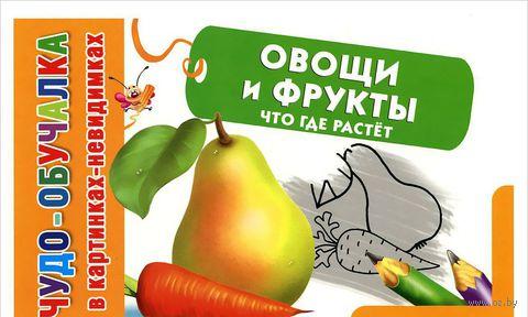 Овощи и фрукты. Что где растет