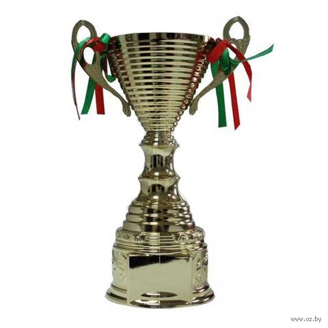 Кубок сувенирный (арт. 1239B) — фото, картинка
