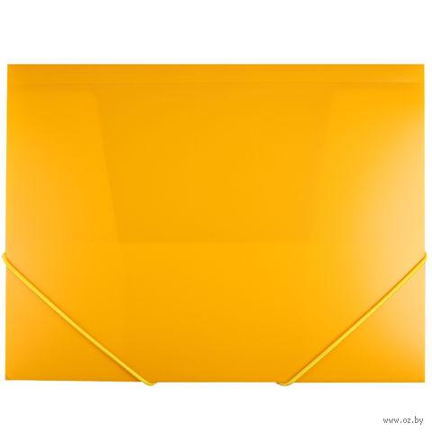 "Папка на резинке ""Darvish"" (А4; желтая; арт. DV055R)"