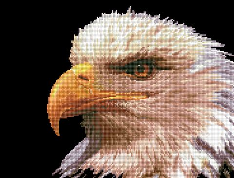 "Алмазная вышивка-мозаика ""Орел"" (520х395 мм) — фото, картинка"