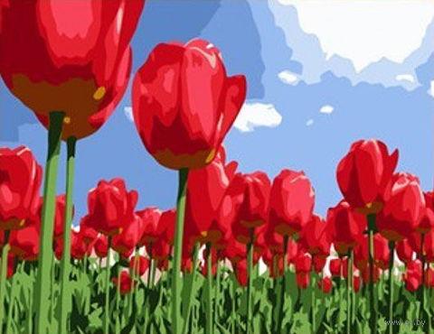 "Картина по номерам ""Тюльпаны"" (400x500 мм; арт. MG215)"