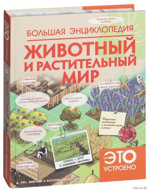 Большая энциклопедия. Животный и растительный мир — фото, картинка