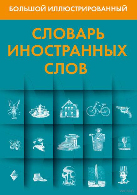 Большой иллюстрированный словарь иностранных слов — фото, картинка