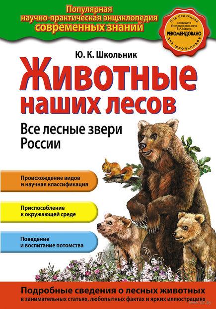Животные наших лесов. Все лесные звери России. Юлия Школьник