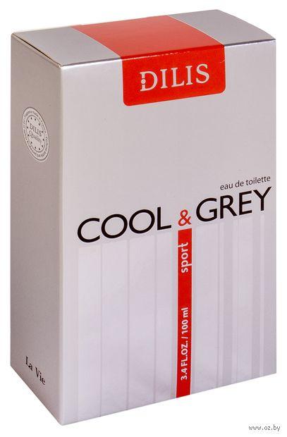 "Туалетная вода для мужчин ""Cool & Grey Sport"" (100 мл)"