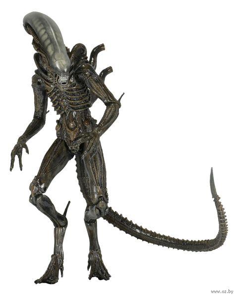 """Фигурка """"Neca. Aliens Series 6. Isolation Xenomorph"""" (25 см)"""