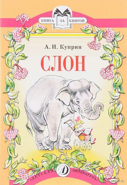 Слон (м). Александр Куприн