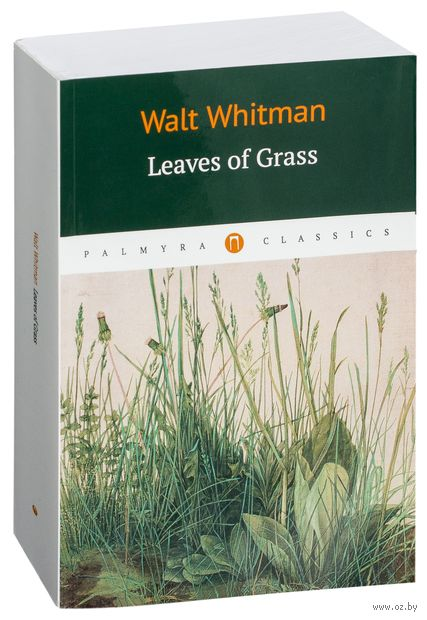 Leaves of grass — фото, картинка