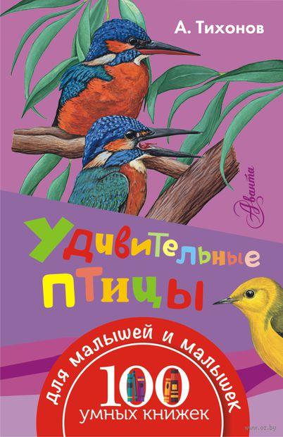 Удивительные птицы. Александр Тихонов