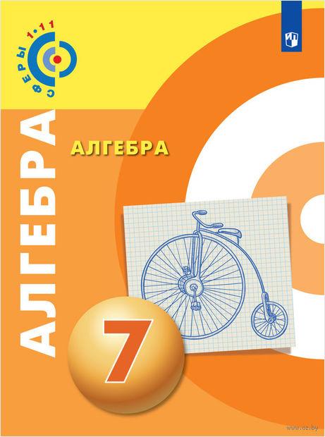 Алгебра. 7 класс — фото, картинка