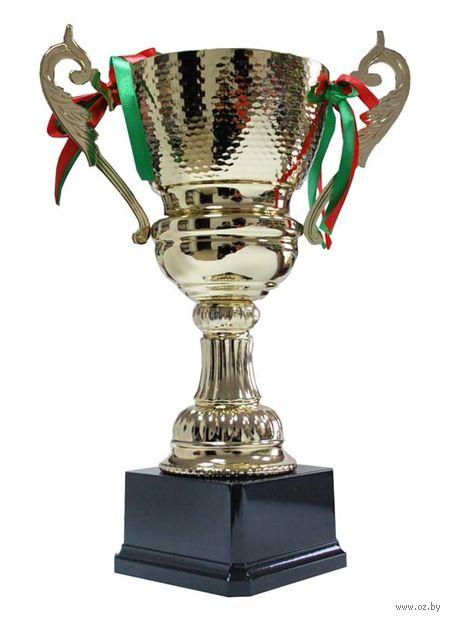 Кубок сувенирный (арт. 4015С) — фото, картинка