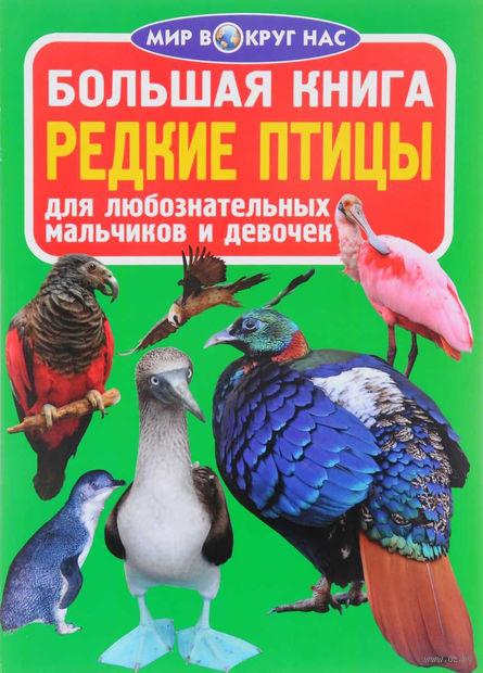 Большая книга. Редкие птицы — фото, картинка