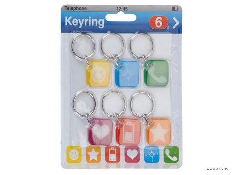 Набор брелоков для ключей пластмассовых (6 шт.; арт. 110651000)