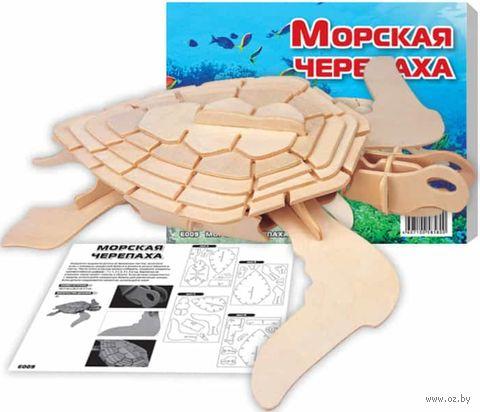 """Сборная деревянная модель """"Морская черепаха"""" — фото, картинка"""