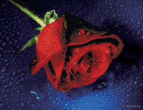 "Вышивка крестом ""Прекрасная роза"" (480х380 мм) — фото, картинка"