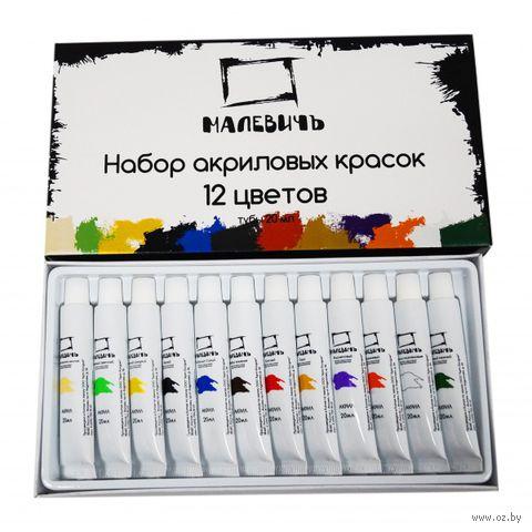 Набор акриловых красок (12 цветов x 20 мл)
