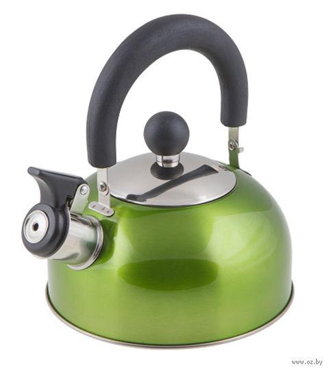 Чайник металлический со свистком (1,2 л; зеленый металлик) — фото, картинка