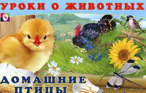 Домашние птицы. Ирина Гурина