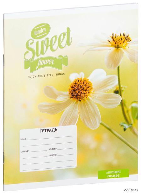 """Тетрадь в линейку 18 листов """"Цветы. Sweet Flower"""""""