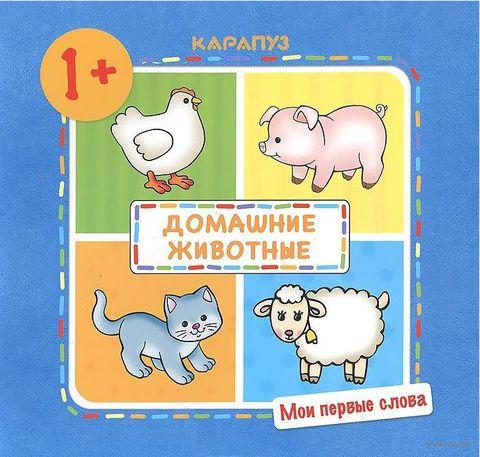 Домашние животные. Ольга Громова